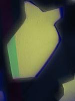 11_img2051completesite.jpg